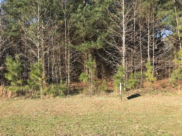 110 Lee Road 398, LOACHAPOKA, AL 36865 (MLS #139815) :: Crawford/Willis Group
