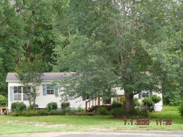 307 Lee Road 704, OPELIKA, AL 36804 (MLS #145886) :: Crawford/Willis Group