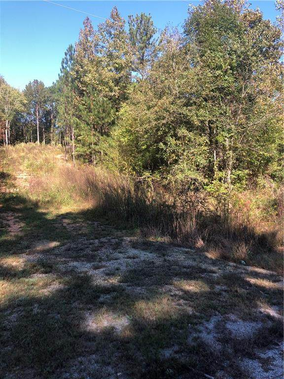 2061 County Road 282, FIVE POINTS, AL 36855 (MLS #148138) :: The Mitchell Team