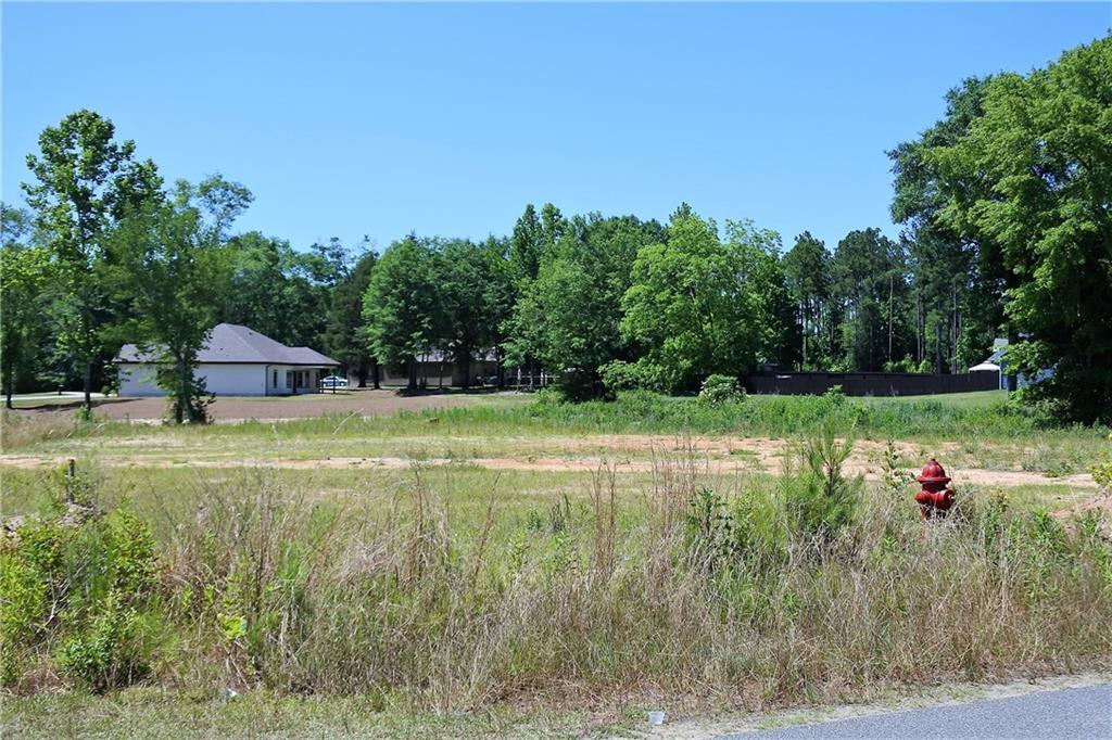 20 Lee Road 2161 Lot36, OPELIKA, AL 36804 (MLS #49255) :: Crawford/Willis Group