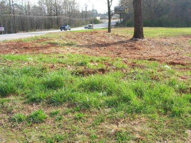3303 Pepperell Parkway, OPELIKA, AL 36801 (MLS #92518) :: The Mitchell Team