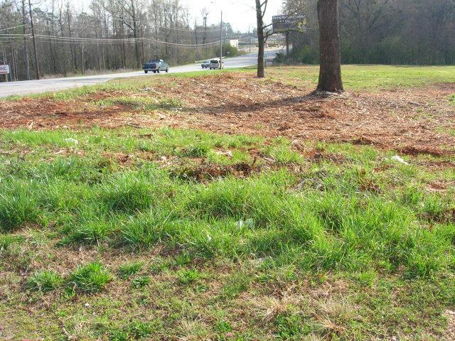 3303 Pepperell Parkway, OPELIKA, AL 36801 (MLS #96329) :: The Mitchell Team