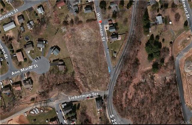 Williamson Street, Palmer Twp, PA 18045 (MLS #505408) :: RE/MAX Results