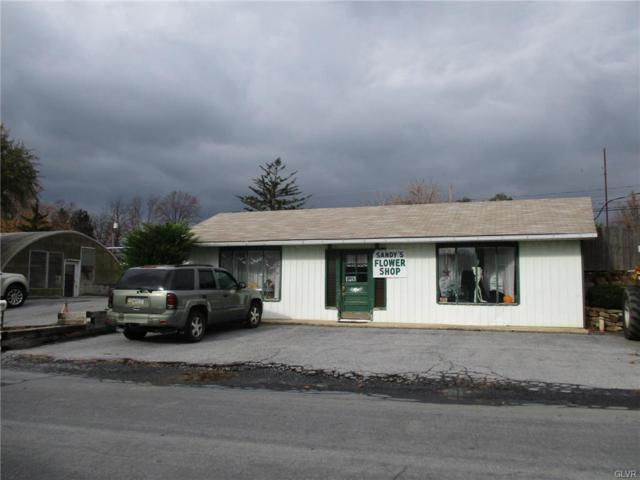 621 E Lynnwood Street, Salisbury Twp, PA 18103 (MLS #563577) :: RE/MAX Results