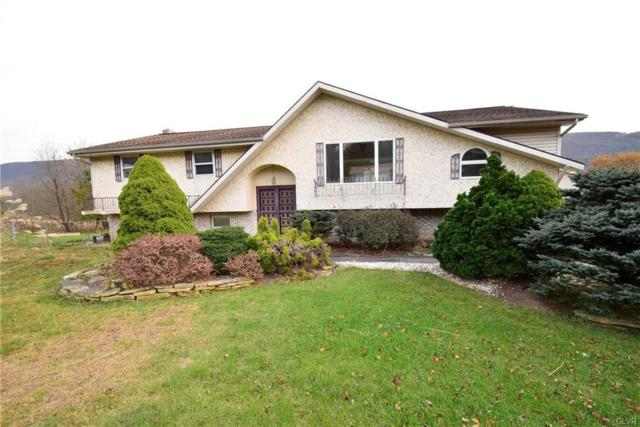 1965 Lower Smith Gap Road, Lower Towamensing Tp, PA 18058 (MLS #563794) :: RE/MAX Results