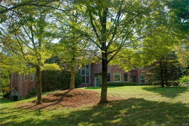 441 Hidden Lake Drive, East Stroudsburg, PA 18302 (MLS #563940) :: RE/MAX Results