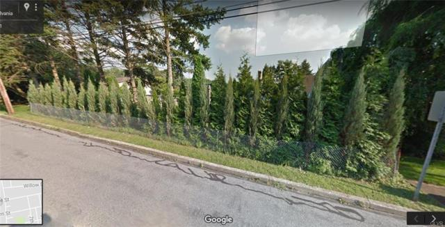 Wyandotte Street Lot 1 Of 2, North Catasauqua Bor, PA 18032 (MLS #570238) :: Jason Freeby Group at Keller Williams Real Estate