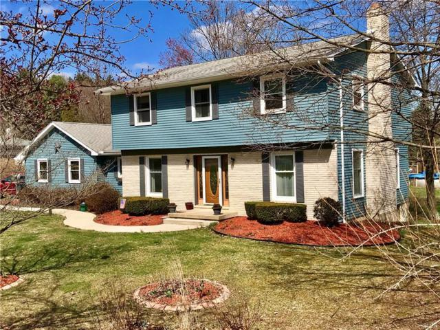 1278 Wood View Road, Eldred Twp, PA 18058 (MLS #578245) :: Jason Freeby Group at Keller Williams Real Estate