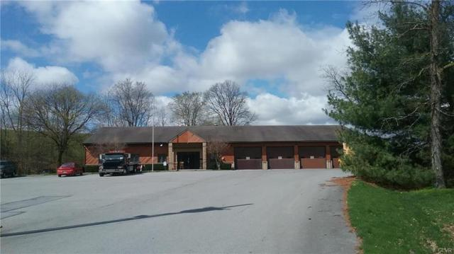 7046 Route 309, Lynn Twp, PA 18066 (MLS #579022) :: RE/MAX Results