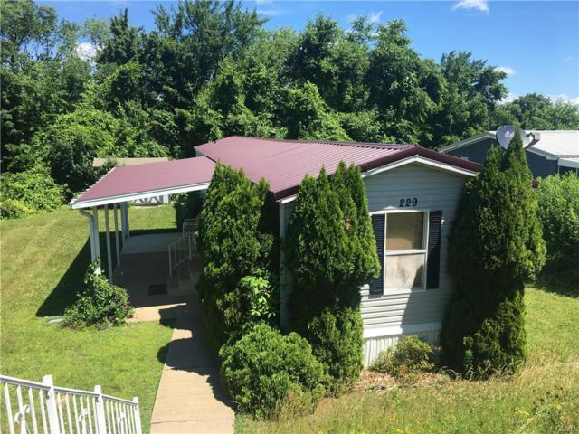 229 Molly Pitcher Lane, Upper Mt Bethel Twp, PA 18343 (MLS #584280) :: RE/MAX Results