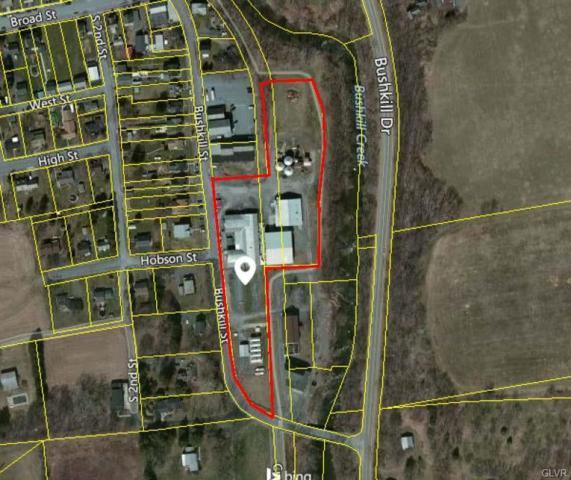 300 Bushkill Street, Tatamy Borough, PA 18085 (MLS #584392) :: RE/MAX Results