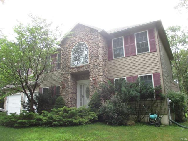177 Jonas Mountain Drive, Penn Forest Township, PA 18210 (MLS #585183) :: RE/MAX Results