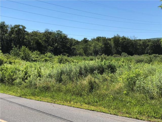 Butternut Drive, Lehigh Township, PA 18088 (MLS #585533) :: RE/MAX Results
