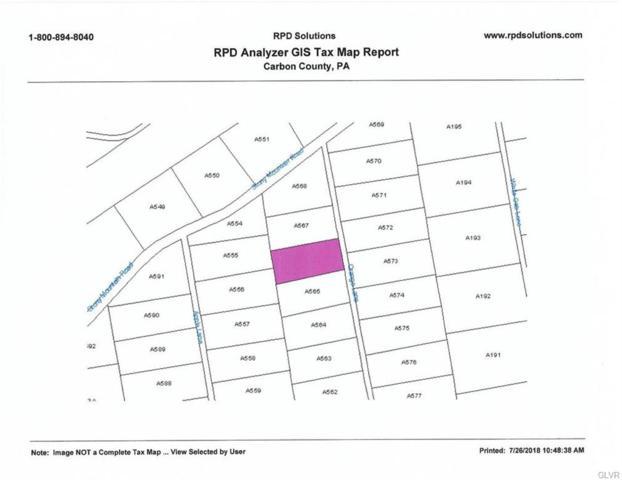 566 Orange Lane, Penn Forest Township, PA 18210 (MLS #586705) :: RE/MAX Results