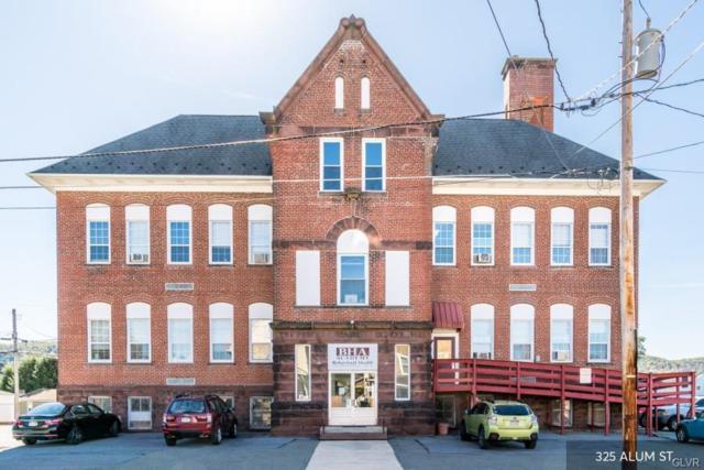 325 Alum Street, Lehighton Borough, PA 18235 (#593146) :: Jason Freeby Group at Keller Williams Real Estate