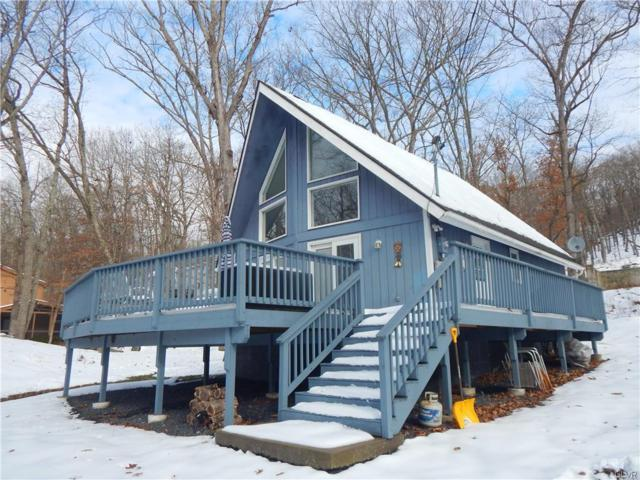 298 Manchester Drive, Pike County, PA 18324 (MLS #596664) :: RE/MAX Results