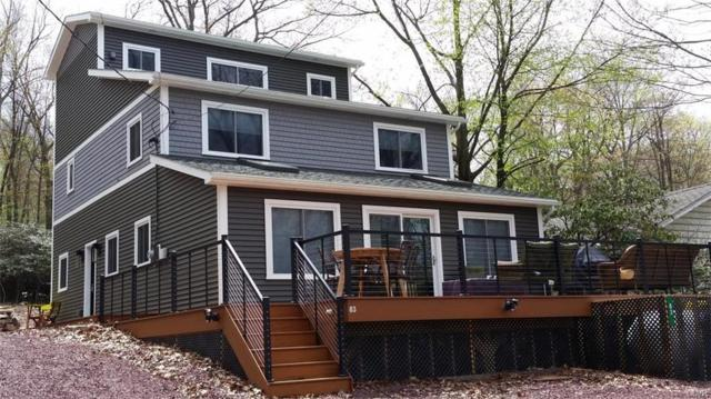 83 S Lake Drive, Kidder Township S, PA 18624 (#598828) :: Jason Freeby Group at Keller Williams Real Estate