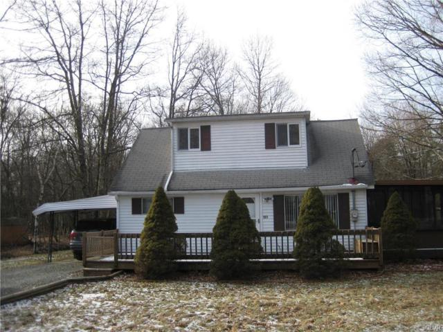 123 Buck Hill Road, Penn Forest Township, PA 18210 (MLS #599143) :: RE/MAX Results