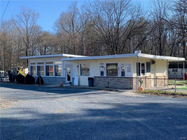 4315 Mountain View Drive, Lehigh Township, PA 18088 (MLS #599190) :: RE/MAX Results