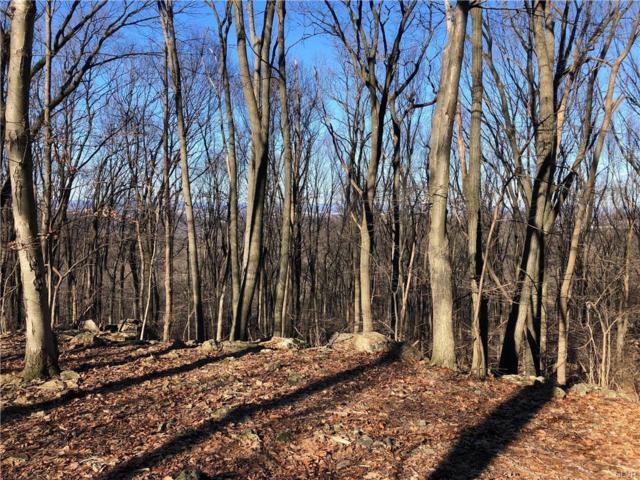 Walker Road, Longswamp Township, PA 18062 (#599458) :: Jason Freeby Group at Keller Williams Real Estate