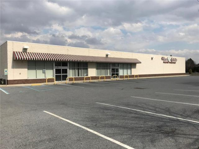 2503 Mickley Avenue, Whitehall Twp, PA 18052 (MLS #605265) :: Keller Williams Real Estate