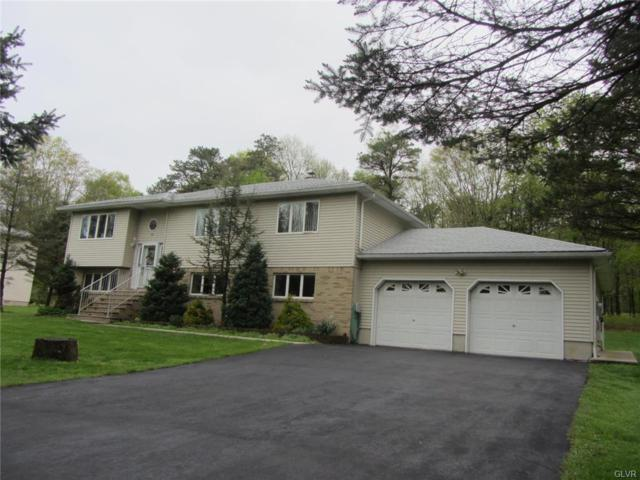 100 Tatra Drive, Franklin Township, PA 18235 (MLS #609870) :: Keller Williams Real Estate
