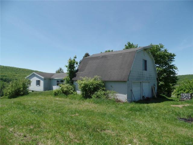 1273 Bearfoot, Eldred Twp, PA 18353 (#611589) :: Jason Freeby Group at Keller Williams Real Estate