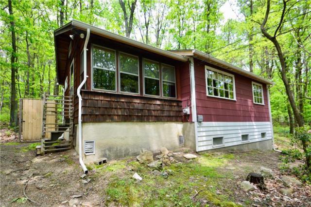 1401 David Lane, Chestnuthill Twp, PA 18330 (MLS #612008) :: Keller Williams Real Estate
