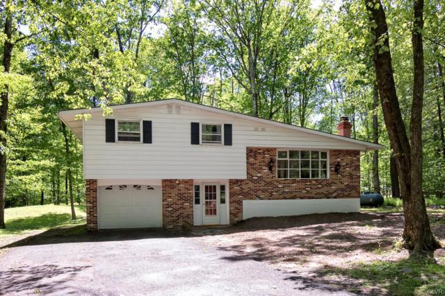 13 Bull Pine Road, East Stroudsburg, PA 18301 (MLS #612148) :: Keller Williams Real Estate