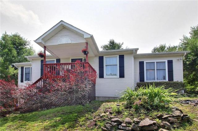 220 Fringe Drive, East Stroudsburg, PA 18302 (MLS #616853) :: Keller Williams Real Estate