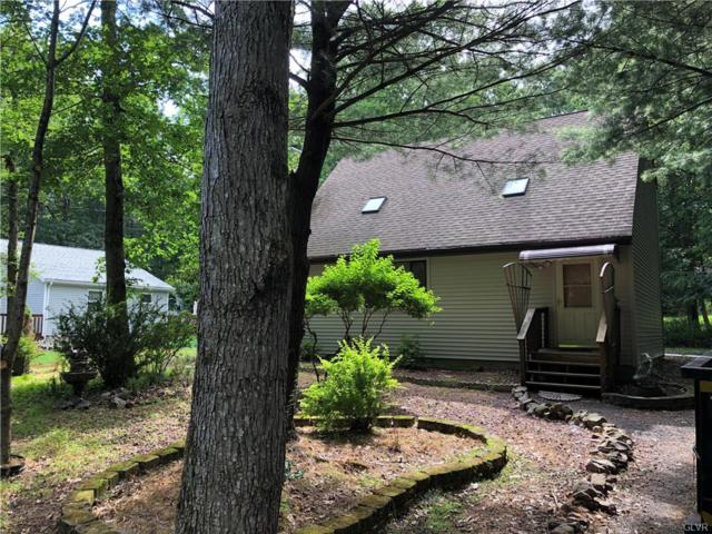 45 Hugo Drive, Penn Forest Township, PA 18210 (MLS #617217) :: Keller Williams Real Estate