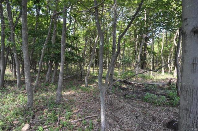 2123 Lindbergh Circle, Penn Forest Township, PA 18210 (MLS #619192) :: Keller Williams Real Estate