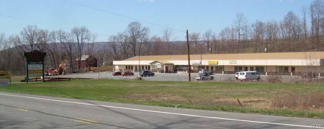 4330 Lehigh Drive, Lehigh Township, PA 18088 (MLS #626450) :: Keller Williams Real Estate
