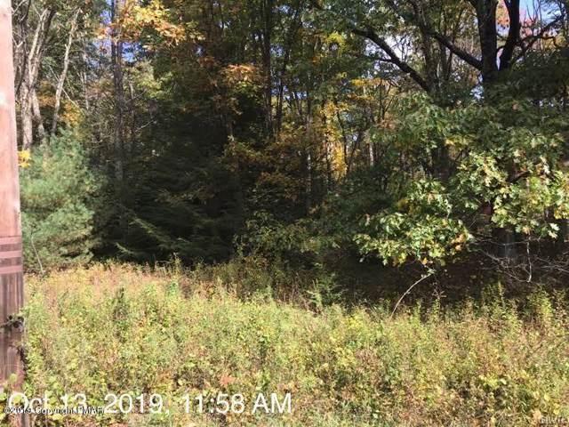 559 Devils Hole Road, Paradise Twp, PA 18326 (MLS #629278) :: Keller Williams Real Estate
