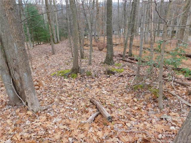 0 Lake Drive, Nesquehoning Borough, PA 18240 (#630274) :: Jason Freeby Group at Keller Williams Real Estate