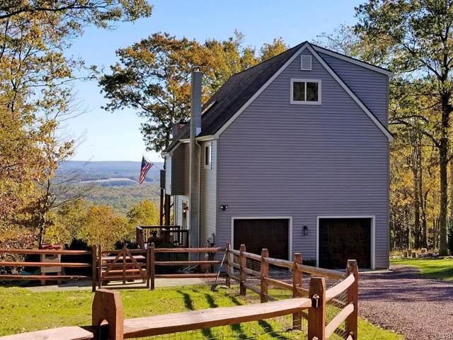 156 Stone Ridge Road, Penn Forest Township, PA 18210 (MLS #631728) :: Keller Williams Real Estate