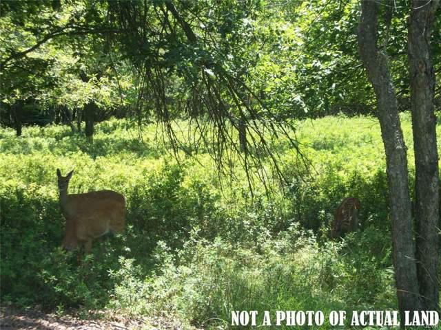 383 Wild Creek Drive, Penn Forest Township, PA 18229 (MLS #631891) :: Keller Williams Real Estate