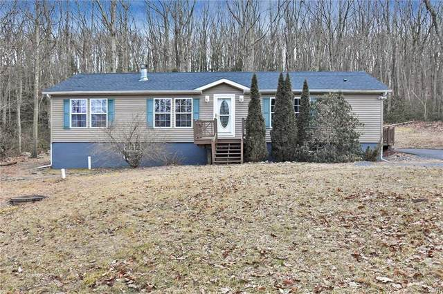248 Thunderbird Terrace, Stroudsburg, PA 18360 (MLS #634440) :: Justino Arroyo | RE/MAX Unlimited Real Estate