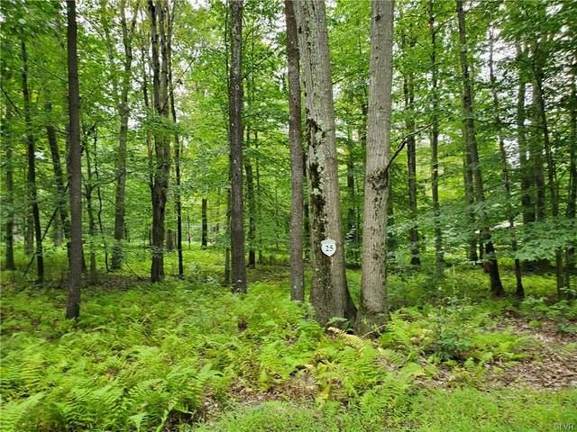 25 Oak Leaf Lane Lot 25, Tobyhanna Twp, PA 18347 (MLS #635546) :: Justino Arroyo | RE/MAX Unlimited Real Estate