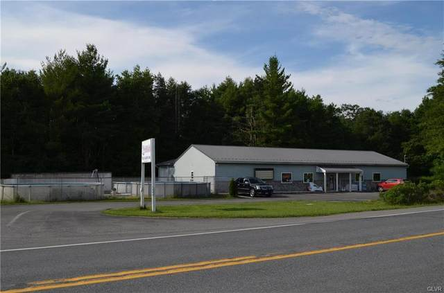 856 Interchange Road, Polk Twp, PA 18333 (#643543) :: Jason Freeby Group at Keller Williams Real Estate