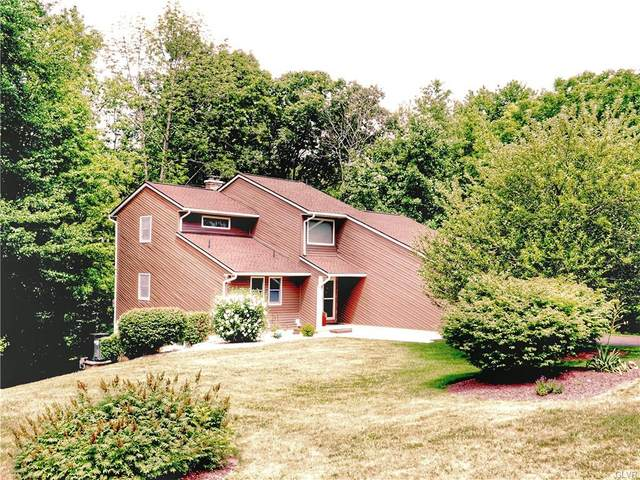 301 Blue Mountain Drive, Schuylkill County, PA 17960 (MLS #644936) :: Keller Williams Real Estate