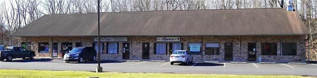 6890 Pa Rte 309, Lynn Twp, PA 18066 (#657184) :: Jason Freeby Group at Keller Williams Real Estate