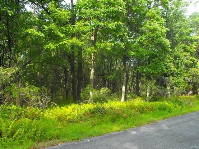 2271 Seneca Road, Penn Forest Township, PA 18210 (MLS #681503) :: Smart Way America Realty