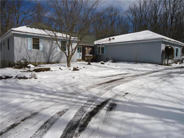 178 Broad Mountain View Drive, Penn Forest Township, PA 18229 (MLS #573988) :: RE/MAX Results