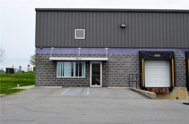 801 Tomahawk Drive, Maxatawny Township, PA 19530 (MLS #604466) :: Justino Arroyo   RE/MAX Unlimited Real Estate