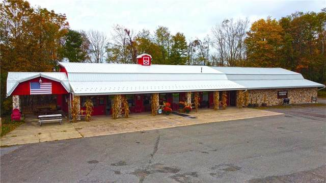 182 State Route 437, Luzerne County, PA 18661 (MLS #664925) :: Smart Way America Realty