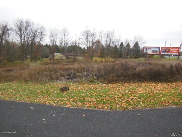 Lot 5, Route 209, Chestnuthill Twp, PA 18322 (#596524) :: Jason Freeby Group at Keller Williams Real Estate