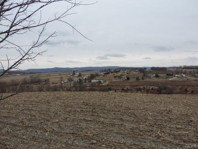 10265 Gravel Hill Road, Lower Mt Bethel Twp, PA 18013 (#605382) :: Jason Freeby Group at Keller Williams Real Estate