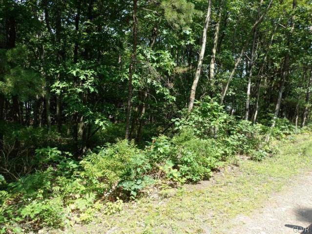 7222 Saw Mill Road, Tunkhannock Township, PA 18334 (MLS #622921) :: Justino Arroyo | RE/MAX Unlimited Real Estate