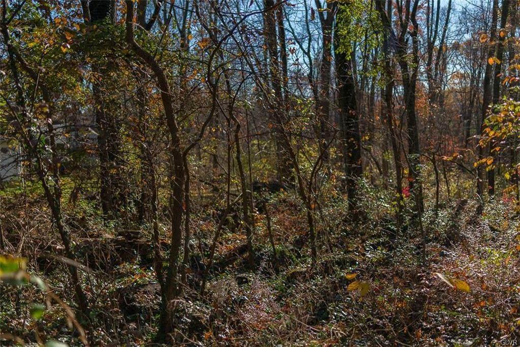 365 Raubsville Road - Photo 1